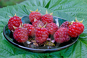 Ripe Appetizing Raspberry Stock Photo - Image: 14938190