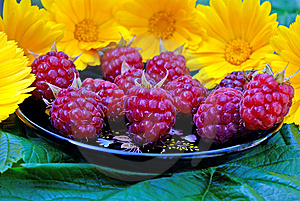 Ripe Appetizing Raspberry Stock Photos - Image: 14938263