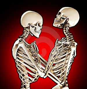 Tender Skeletons Royalty Free Stock Image - Image: 14942626
