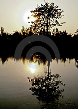 Golden Sunset Over The Lake Stock Photos - Image: 14945123