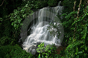 Waterfall In The Rain Forest Stock Image - Image: 14946981