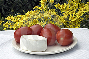Cheese And Tomatoes Stock Photography - Image: 14953832