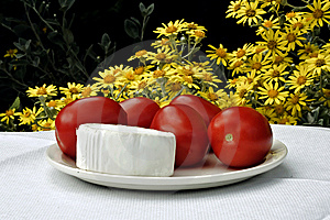 Cheese And Tomatoes Royalty Free Stock Image - Image: 14953846