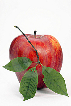 Red Apple With Green Leaflets Royalty Free Stock Photos - Image: 14954648