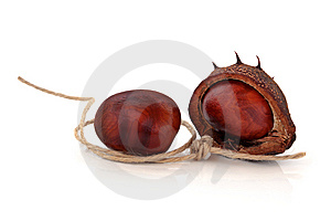 Conkers And String Stock Photography - Image: 14970902