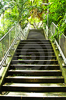 Stairway In The Garden Stock Image - Image: 14971801