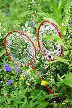 Two Racket Stock Photos - Image: 14977213