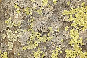 Rock Background Stock Image - Image: 14986881