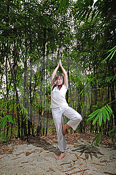 Asian Woman Practising Yoga In Woods Stock Photo - Image: 14987720