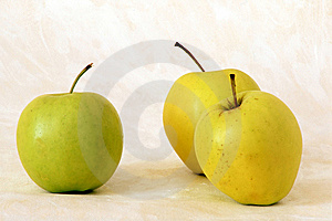 Three Yellow Apples Stock Image - Image: 14988071