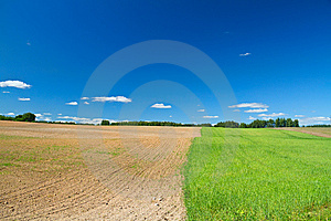 Field As Seed And Tillage Royalty Free Stock Images - Image: 14994909