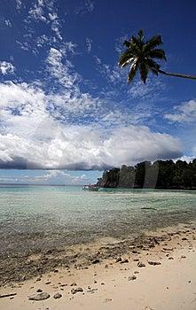 Beautiful Beach Stock Photos - Image: 14995023