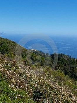 Большая береговая линия Sur Стоковые Фотографии RF