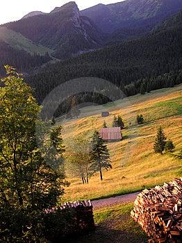 Tatra Fields Stock Image