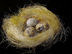 Eggs In A Nest Royalty Free Stock Photography - Image: 1504267