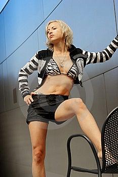 Fashion Model Stock Photography - Image: 15001582