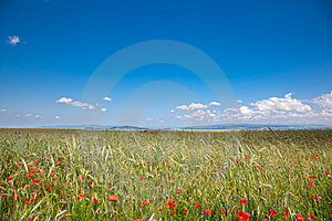 Romanian Countryside Royalty Free Stock Photo - Image: 15006185