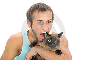 Man Bites For Ear Of Cat Royalty Free Stock Photos - Image: 15009318