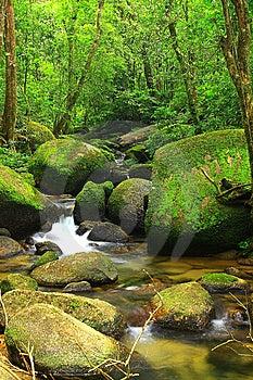 Waterfall Stock Photography - Image: 15011182