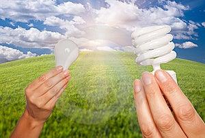 Female Hands Holding Light Bulbs Stock Photos - Image: 15024733