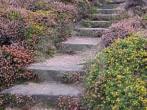 Coastal Path On Jersey Stock Photo - Image: 15047190