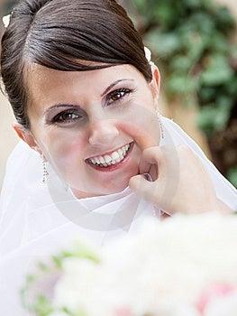 Beautiful Bride Stock Photos - Image: 15054063