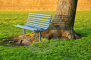 Inviting Bench Under An Old Tree Royalty Free Stock Photo - Image: 15056175