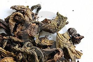 Dry Chinese Tea Leaf. Stock Image - Image: 15066151