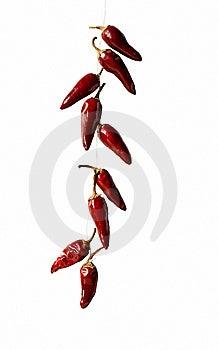 Hot Pepper Bunch Stock Photos - Image: 15066523