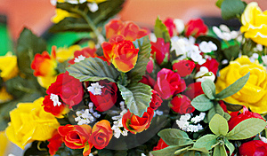 Roses Royalty Free Stock Photos - Image: 15067838