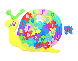 A Puzzle Shellfish Royalty Free Stock Image - Image: 15071856