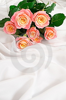Bouquet Of Roses. Stock Photography - Image: 15073772