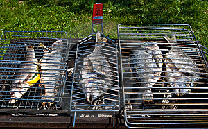 Fish On A Grill Stock Photos - Image: 15075213