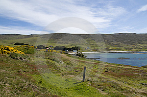 Farming In The Falklands Royalty Free Stock Photography - Image: 15086077