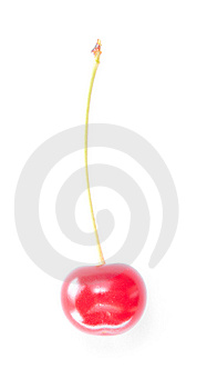 One Ripe Cherry. Royalty Free Stock Photography - Image: 15088827