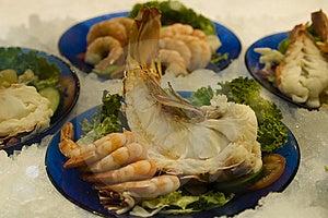 Fresh Shrimps Royalty Free Stock Image - Image: 15090046