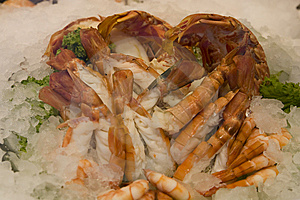 Fresh Shrimps Royalty Free Stock Photos - Image: 15090238