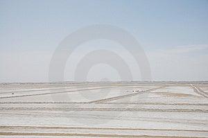 Alkaline Land Stock Photos - Image: 15090813