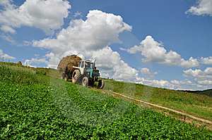 Hay Transportation. Stock Photography - Image: 15096422