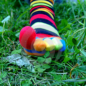 Toesocks Stock Image - Image: 1515921