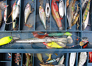 Set Of Fishing Equipment Stock Photo - Image: 15100200