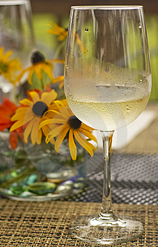 Glass Of Chilled White Wine Stock Photos - Image: 15104313