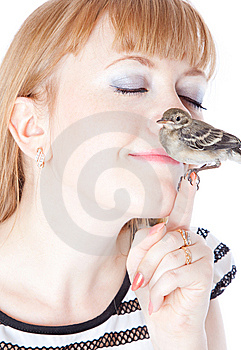 Nestling Of Bird (wagtail) On Hand Royalty Free Stock Image - Image: 15106426