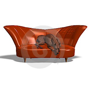 Miniature Pinscher Dog Stock Image - Image: 15107601