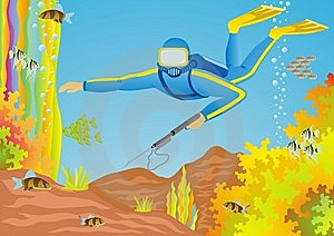 Diver Royalty Free Stock Images - Image: 15110699
