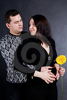 Happy Pregnant Couple Royalty Free Stock Images - Image: 15117229