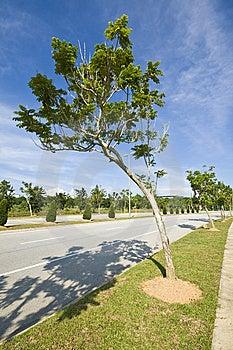 Cyber Jaya Landscape Royalty Free Stock Photography - Image: 15123067