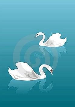 Swan Lake Stock Image - Image: 15126081