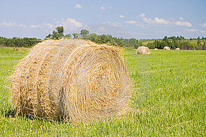 Haystacks Harvest Against The Skies Royalty Free Stock Photos - Image: 15140998