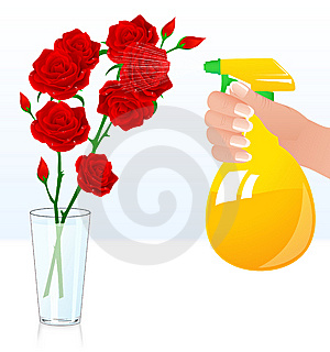 Rose Shower Royalty Free Stock Images - Image: 15148959